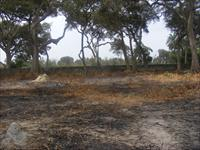Land for Sale in Tujering Full...